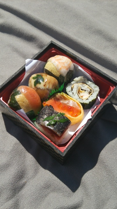 My bento for a picnic in Kyoto